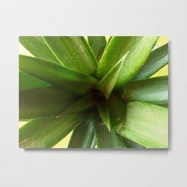 Pineapple Tops Metal Print