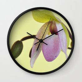 """Pink Parfait"" Slipper Orchid Wall Clock"