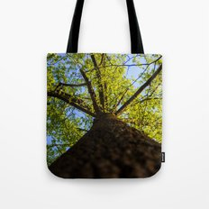Upward to the canopy Tote Bag