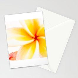 Dreamy Fangipani Stationery Cards