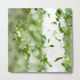Green moods Metal Print