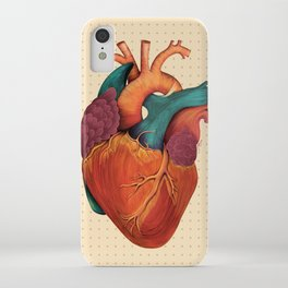 Anatomical Human Heart - Textbook Color iPhone Case