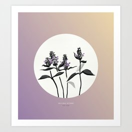 [6.21—6.26] Self-Heal Withers Art Print
