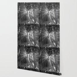 The Golden Light (Black and White) Wallpaper
