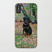puppy iPhone & iPod Cases featuring Puppy by PSimages