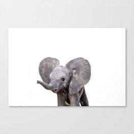 Baby Elephant animal Canvas Print