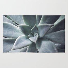 A Succulent Life Rug