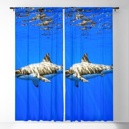 Magnificent Great White Shark God Rays Under Surface HD Blackout Curtain