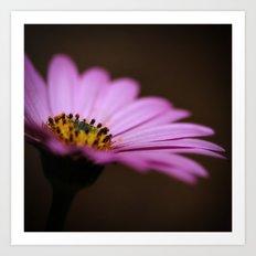 One Purple Daisy Art Print