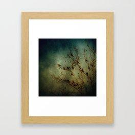 Bird Tree Framed Art Print