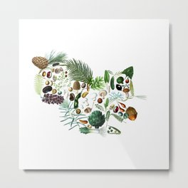 Botanical Squiirel Metal Print