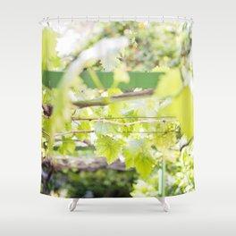 Under the Arbor Shower Curtain