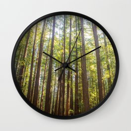 Redwood Trees Wall Clock