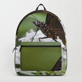 Little Brown Butterfly Backpack