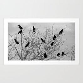 Murder Of Crows - Four Art Print