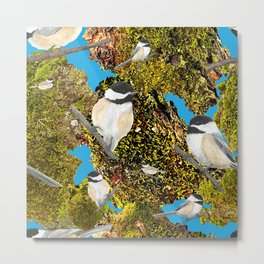 Black Cap Chickadee on Moss Metal Print