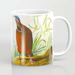 Blue-headed Pigeon Coffee Mug
