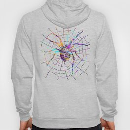Colorful Spider Hoody