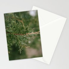 A Winter Water Drop Stationery Cards