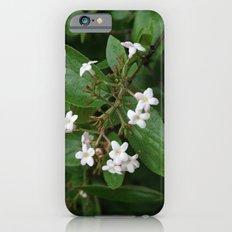 Good Morning! iPhone 6s Slim Case