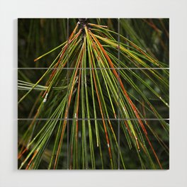 Sappy Multicolor Pine Needles Wood Wall Art