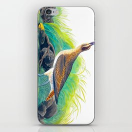 Hudsonian Curlew iPhone Skin