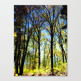 Summer slips into fall Canvas Print