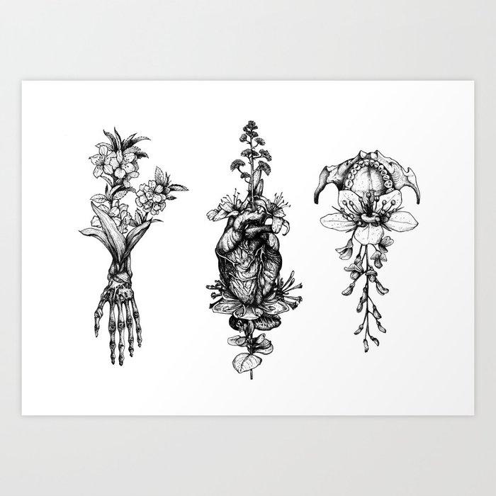 In Bloom - herbarium Art Print
