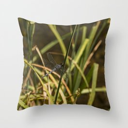 Dragonfly in the marsh Throw Pillow