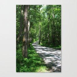 Sunny Path Canvas Print