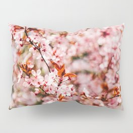 Cherry Blossom Tree (Color) Pillow Sham