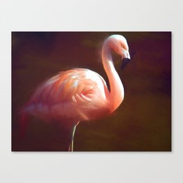 Flamingo dream Canvas Print