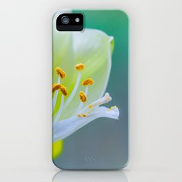 White Flower Against Teal Turquoise Background iPhone Case