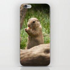 Mmmm iPhone & iPod Skin