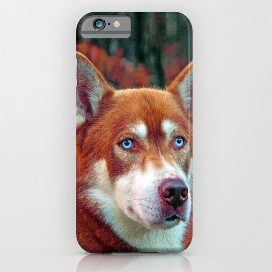 ginger iPhone & iPod Case