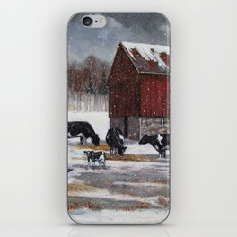 Holstein Dairy Cows in Snowy Barnyard; Winter Farm Scene No. 2 iPhone Skin