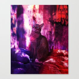 The Sunkissed Abyssinan Cat from Planet Kitarus Canvas Print