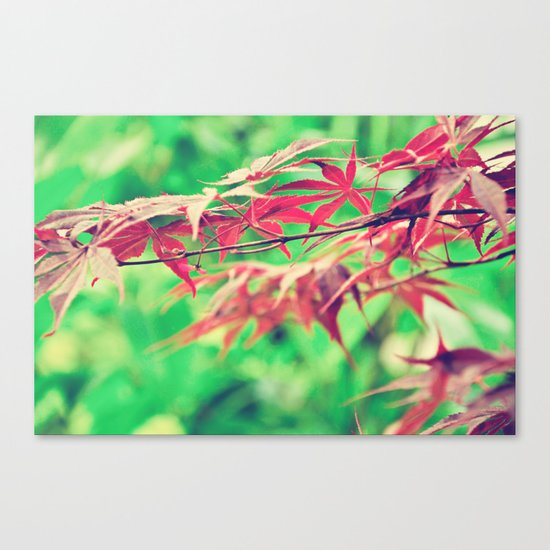 Pointers Canvas Print