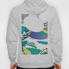 Color #2 Hoody