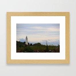 Save House Framed Art Print