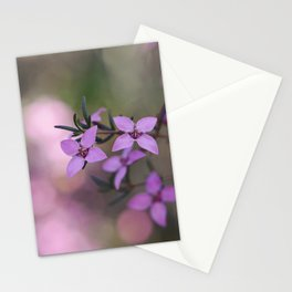 Australian native Showy Boronia blossoms Stationery Cards