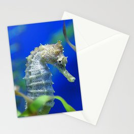 Awesome, Lyrical Sea Horse In Elegant Waters Stationery Cards