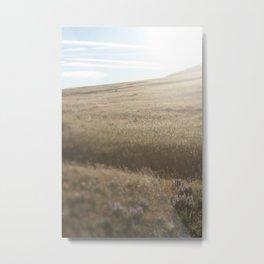 Eastern Oregon Fields Metal Print