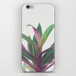 Boat Lily II iPhone Skin