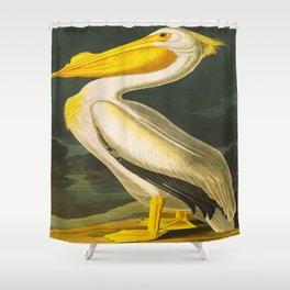 White Pelican John James Audubon Scientific Vintage Illustrations Of American Birds Shower Curtain