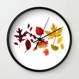 Autumn Rainbow, Fallen Leaves Wall Clock