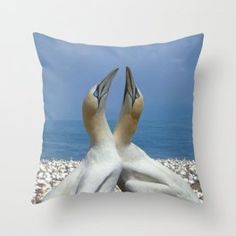 Northern Gannets in love Throw Pillow