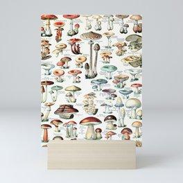 Adolphe Millot - Champignons pour tous - vintage poster Mini Art Print