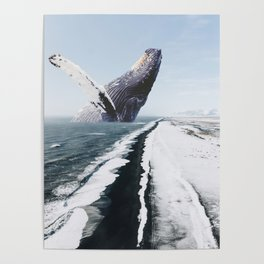 The Humpback Whale-Black Sand Beach in Iceland Poster