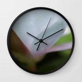 Nymphaea no. 12 Wall Clock